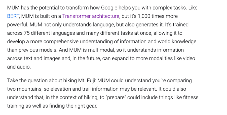 Google's description of MUM technology from their blog